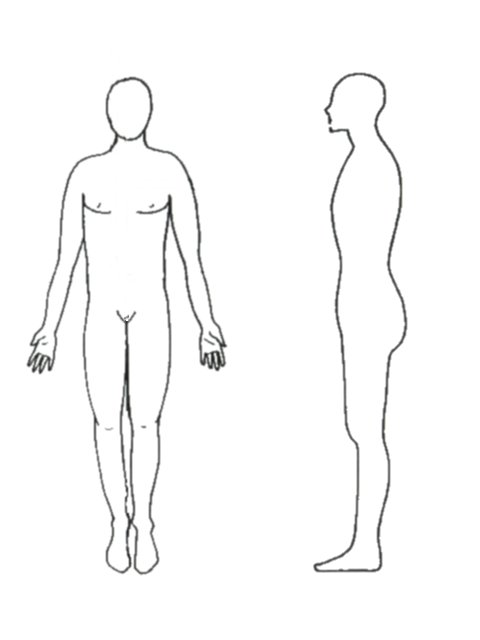 Anatomy body positions